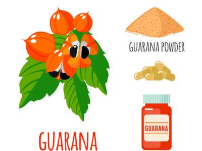 Guárana (Paullinia Cupana) für Körper und Geist